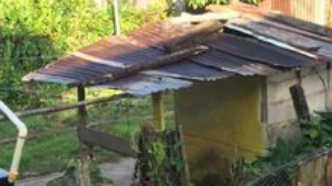 delapitated shack